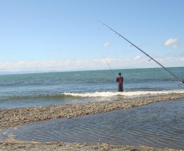 サケ釣り海岸