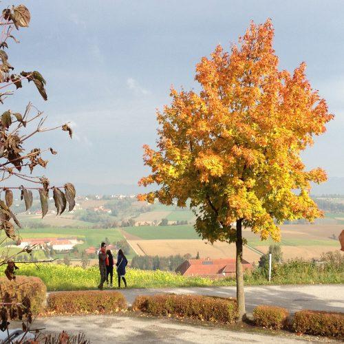 オーストリアの10月
